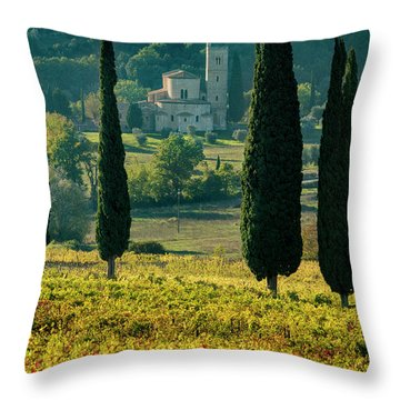 Sant Antimo Throw Pillow by Brian Jannsen