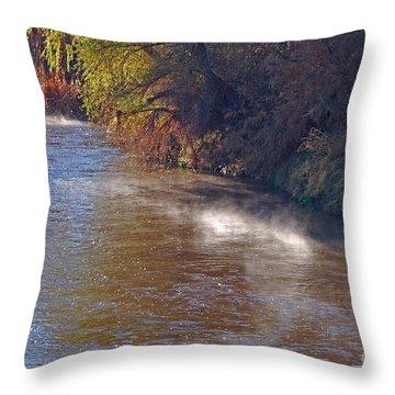 Santa Cruz River - Arizona Throw Pillow
