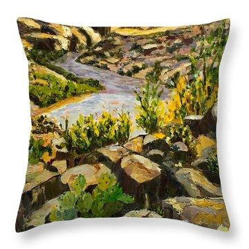 Santa Elena Canyon Throw Pillow