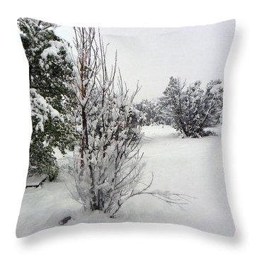 Santa Fe Snowstorm 2017 Throw Pillow