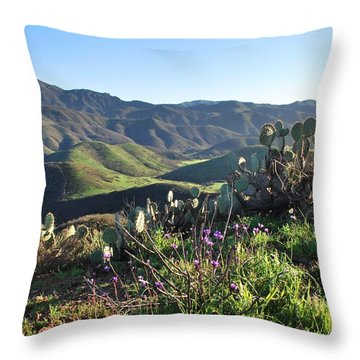 Santa Monica Mountains - Cactus Hillside View Throw Pillow