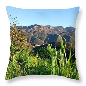 Santa Monica Mountains Green Landscape Throw Pillow