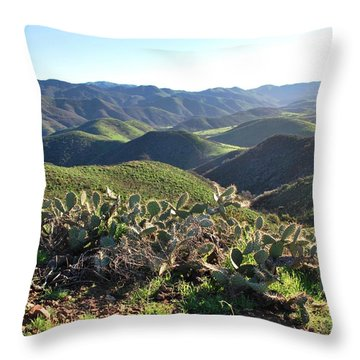 Throw Pillow featuring the photograph Santa Monica Mountains - Hills And Cactus by Matt Harang