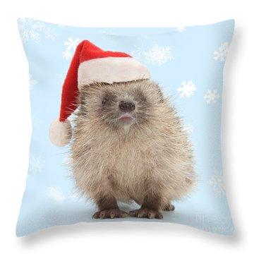 Santa's Prickly Pal Throw Pillow