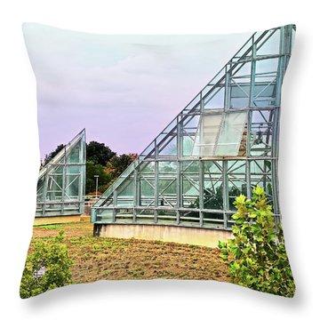 Throw Pillow featuring the photograph Saolariums At San Antonio Botanical Gardens by James Fannin