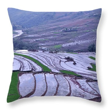 Sapa Rice Paddies Throw Pillow
