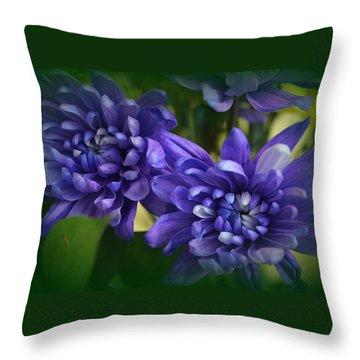 Sapphire Blue Chrysanthemums Throw Pillow