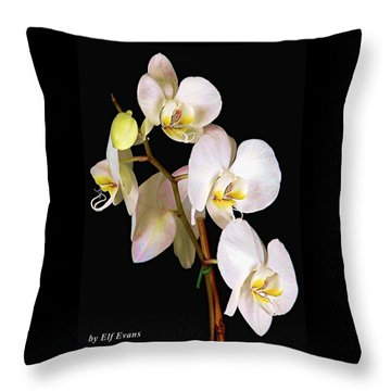 Sara Ella Throw Pillow
