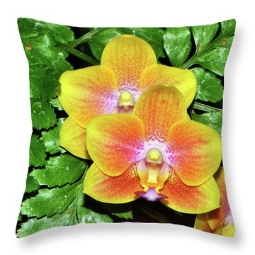 Sara Gold Orchids 003 Throw Pillow by George Bostian