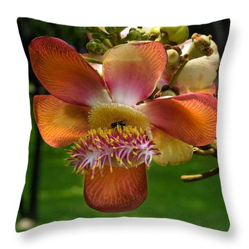 Sara Tree Flower Dthb104 Throw Pillow