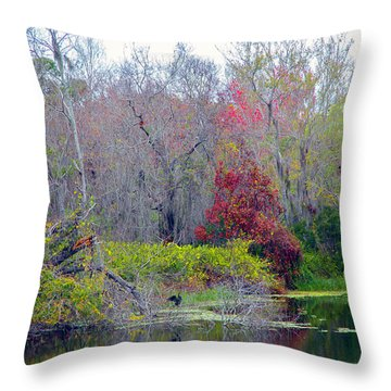 Throw Pillow featuring the photograph Sarasota Reflections by Madeline Ellis