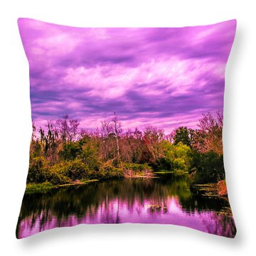 Throw Pillow featuring the photograph Sarasota Symphony 2 by Madeline Ellis