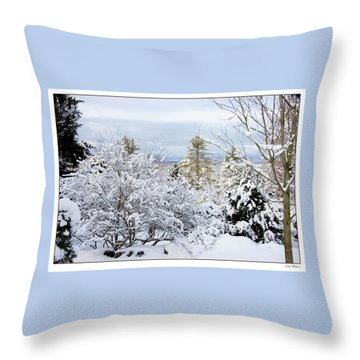 Throw Pillow featuring the photograph Saratoga Winter Scene by Lise Winne