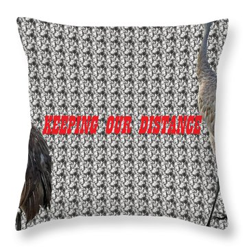 Sassy Sandhil Cranes Throw Pillow