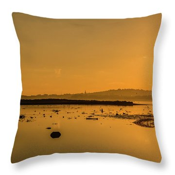 Saturday Morning Along The Estuary  Throw Pillow