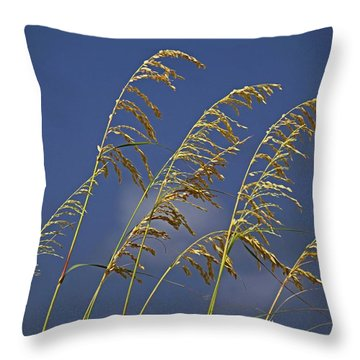 Throw Pillow featuring the photograph Saturday Sway by Michiale Schneider