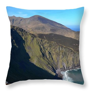 Throw Pillow featuring the photograph Sauce Creek by Barbara Walsh