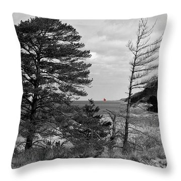 Saugatuck State Park In November Throw Pillow