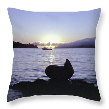 Sausalito Morning Throw Pillow