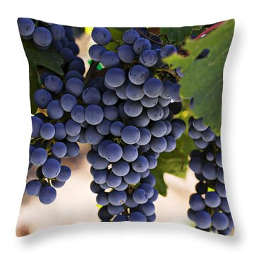 Sauvignon Grapes Throw Pillow by Garry Gay