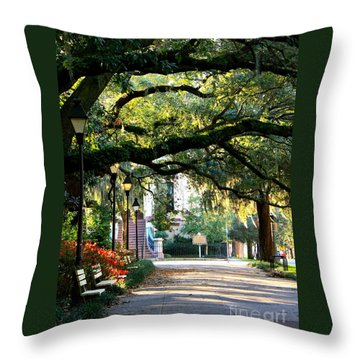 Savannah Park Sidewalk Throw Pillow