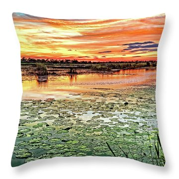 Savannas Sunset Throw Pillow