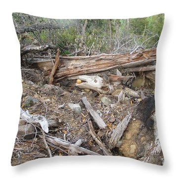 Throw Pillow featuring the photograph Save The Last Bite For Me by Marie Neder