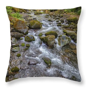 Savegre River - Costa Rica 2 Throw Pillow