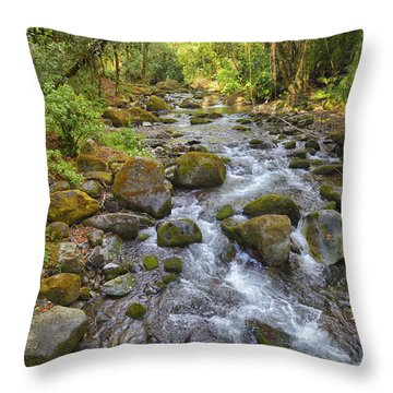 Savegre River - Costa Rica 3 Throw Pillow
