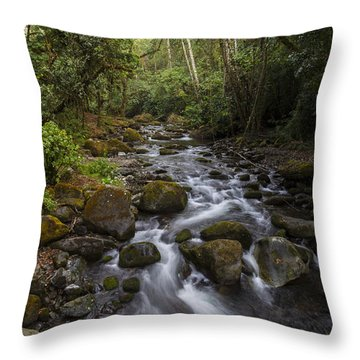 Savegre River - Costa Rica 4 Throw Pillow