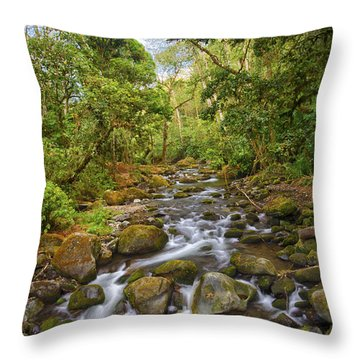 Savegre River - Costa Rica 5 Throw Pillow