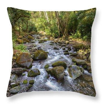 Savegre River - Costa Rica Throw Pillow