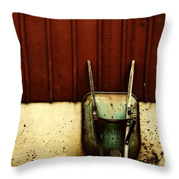 Saving Daylight Throw Pillow