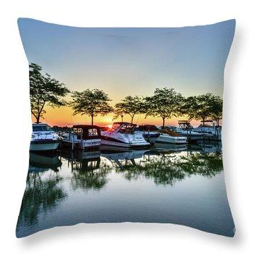 Sawmill Creek Morning Throw Pillow