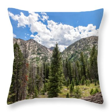 Sawtooth Wilderness 1 Throw Pillow