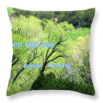 Say Nothing Throw Pillow by David Norman