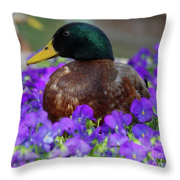 Say Quack Throw Pillow