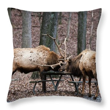 Say Uncle Throw Pillow by Andrea Silies
