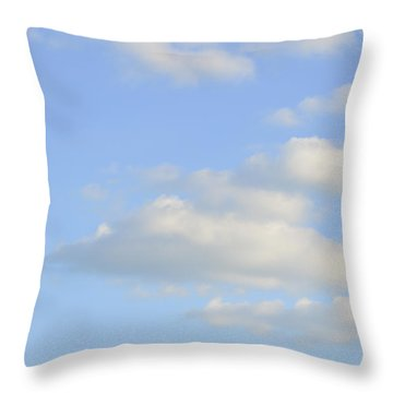 Throw Pillow featuring the photograph Say Vertical by Wanda Krack