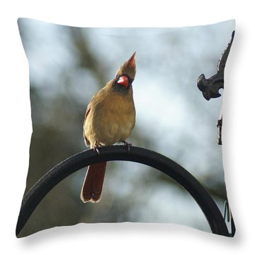Say What Throw Pillow by Heidi Poulin