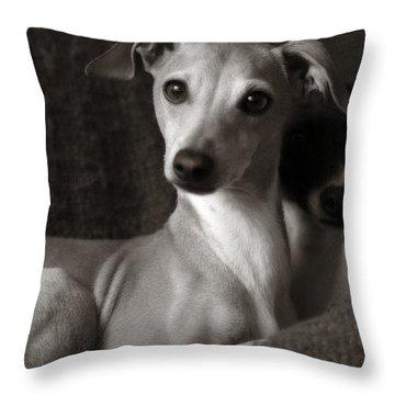Say What Italian Greyhound Throw Pillow