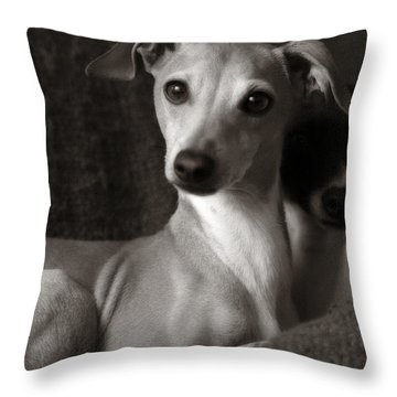 Say What Italian Greyhound Throw Pillow