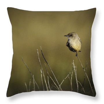 Say's Flycatcher Throw Pillow