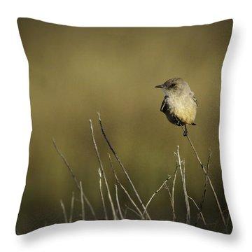 Say's Flycatcher Throw Pillow
