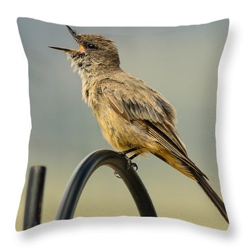 Say's Phoebe Singing Throw Pillow