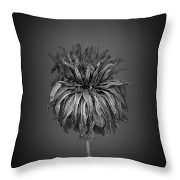 Dried Dahlia 1 Throw Pillow