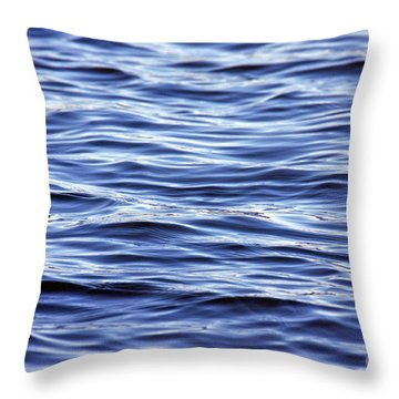 Scanning For Dolphins Throw Pillow