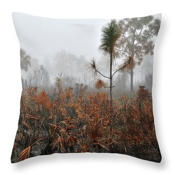Scapes 2 13b Throw Pillow