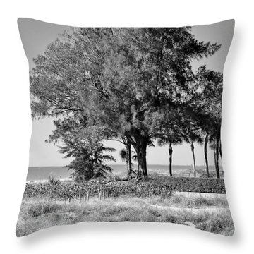 Scapes 2 16b Throw Pillow
