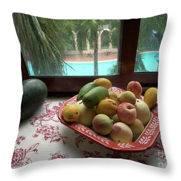 Scapes Of Our Lives #19 Throw Pillow